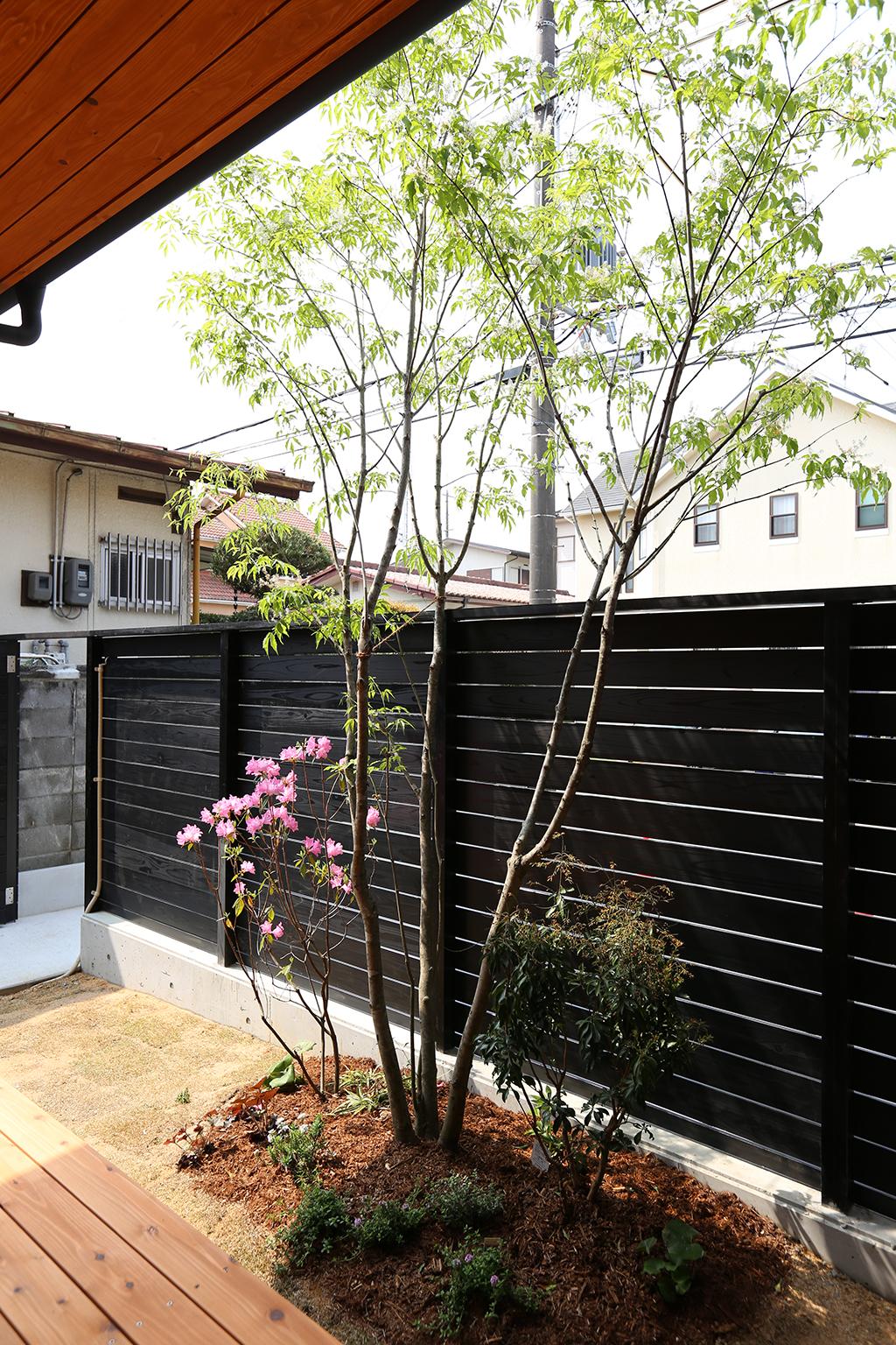三木市の木の家 癒しの植栽