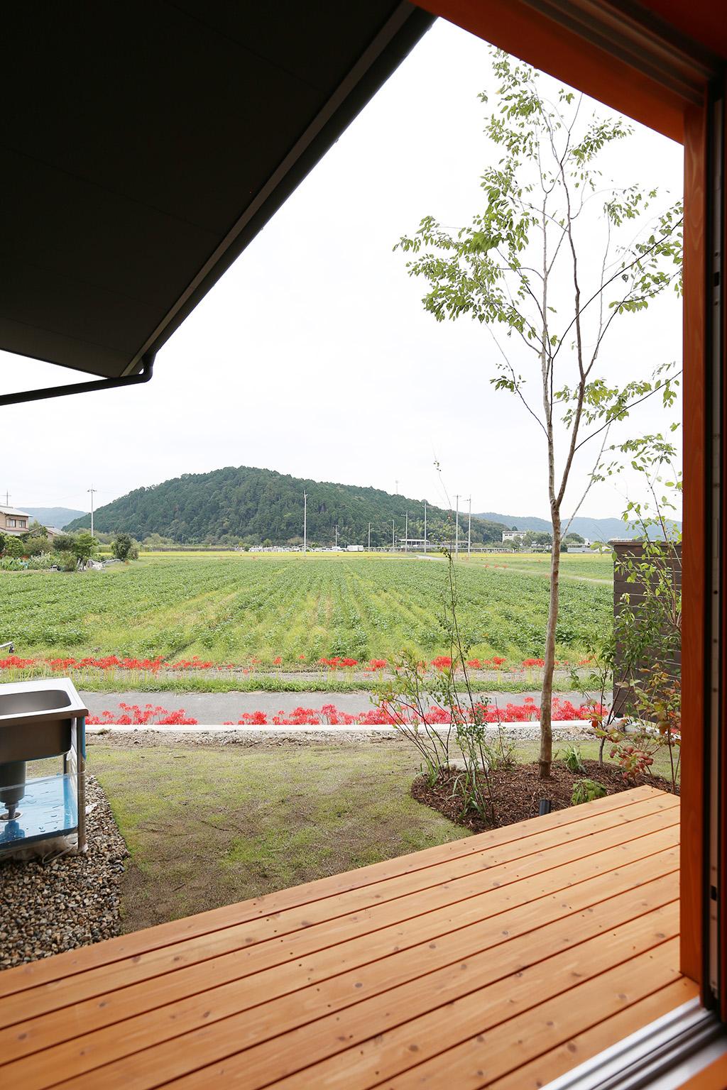 姫路市の木の家 ウッドデッキ越しに田園風景を望む
