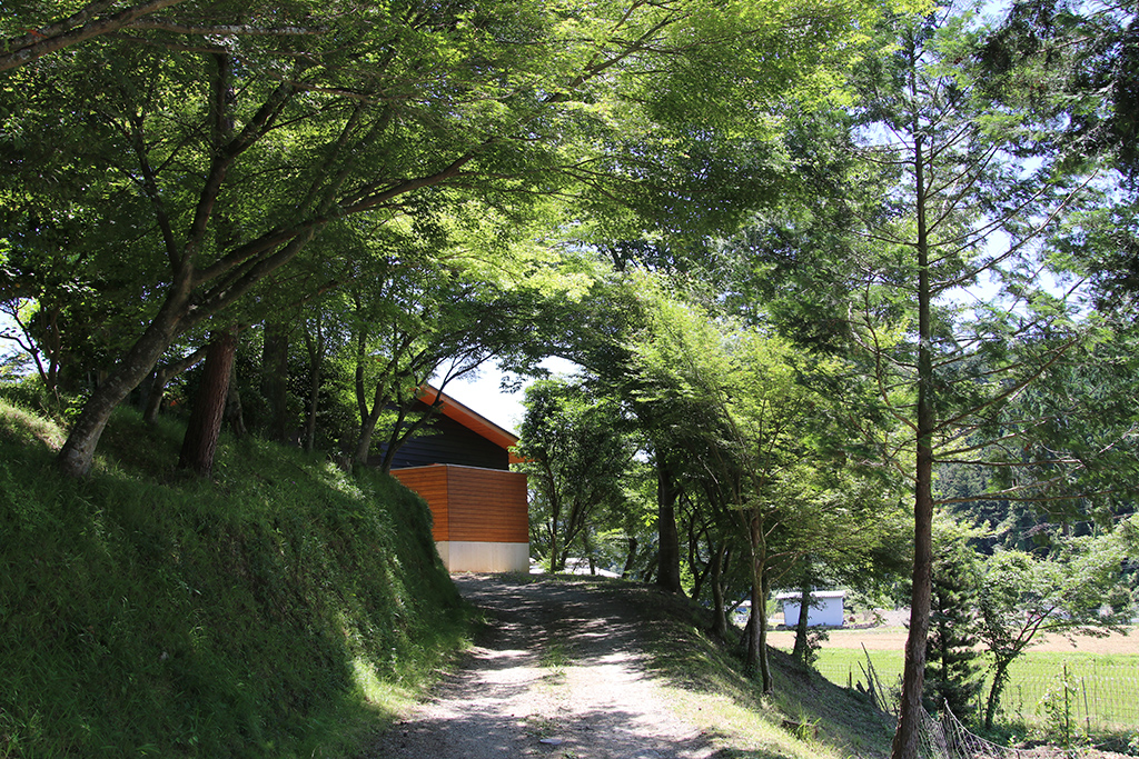 姫路市の木の家 敷地に入る小径