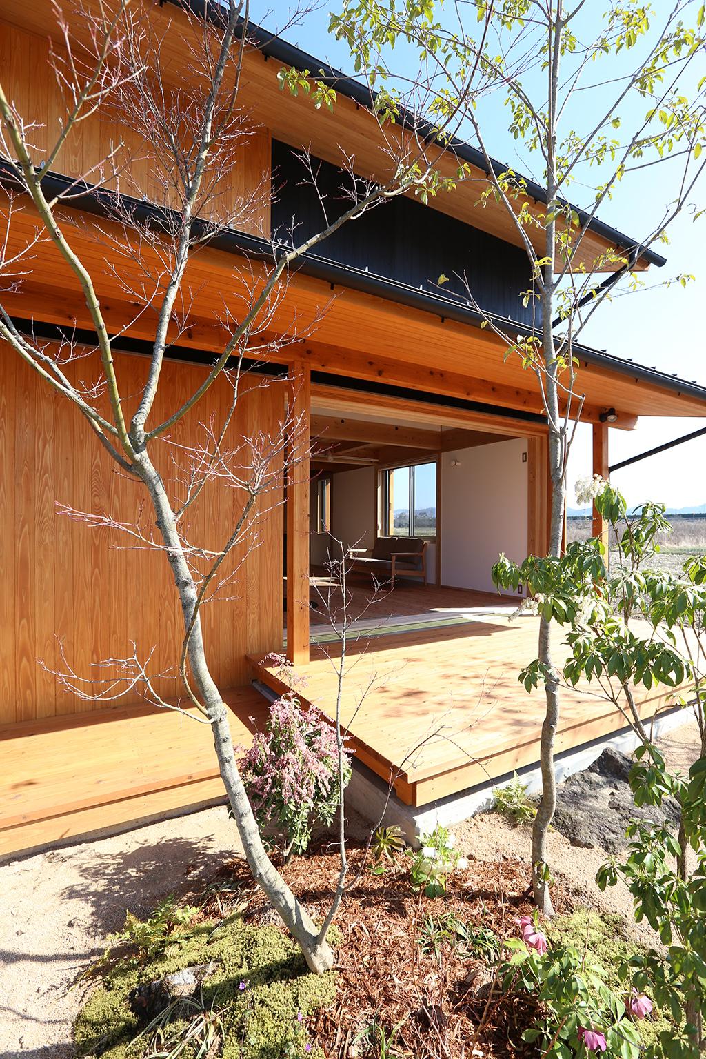 姫路市の木の家 植栽の緑が映える外観