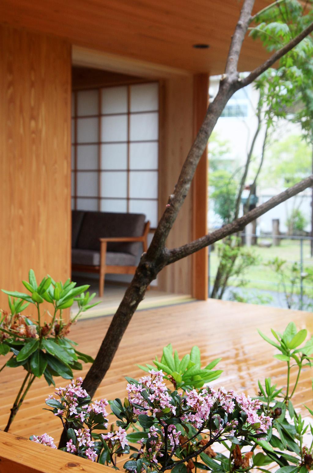 たつの市の木の家 客間からリビングを見る