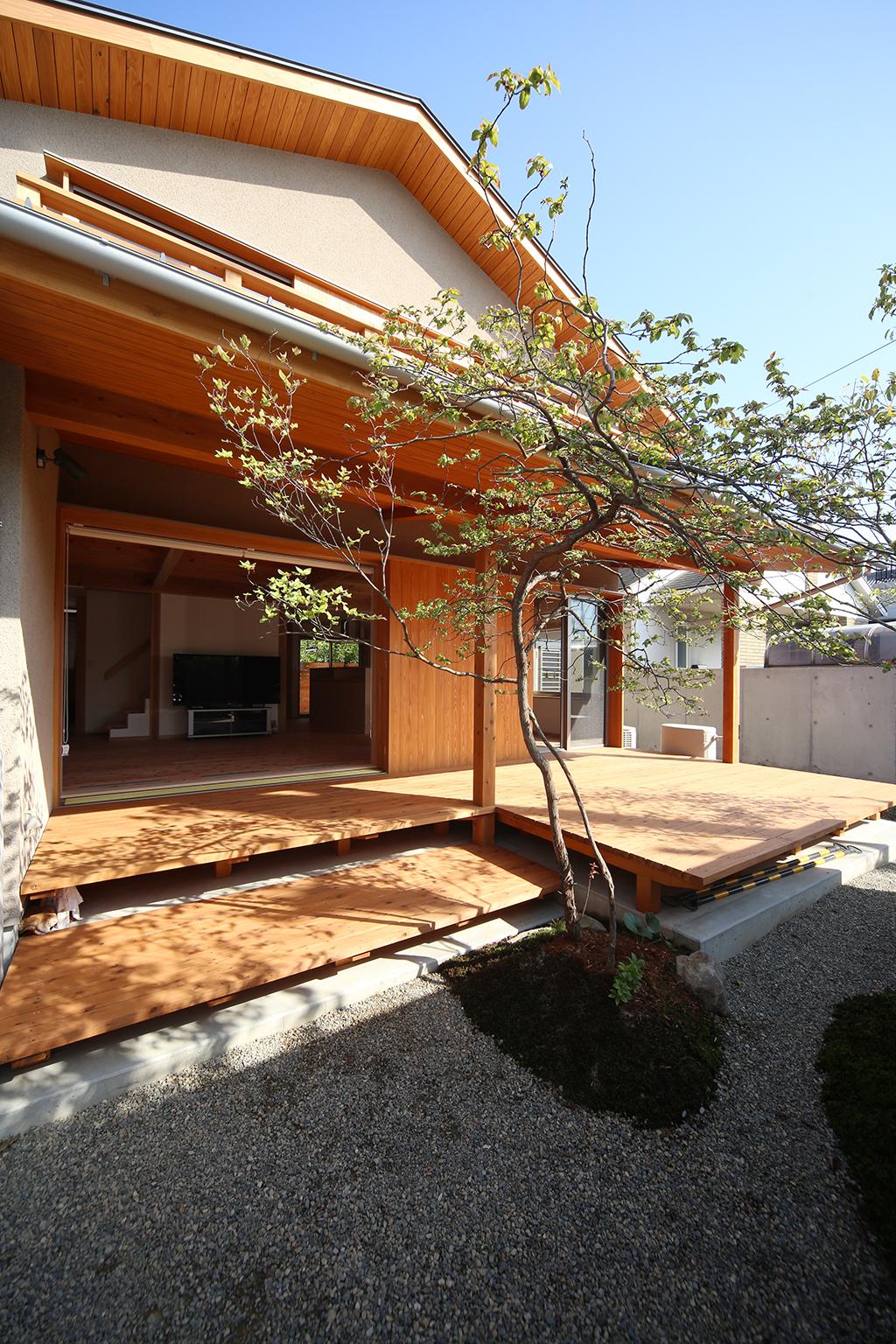 加古川市の木の家 庭から室内を見る