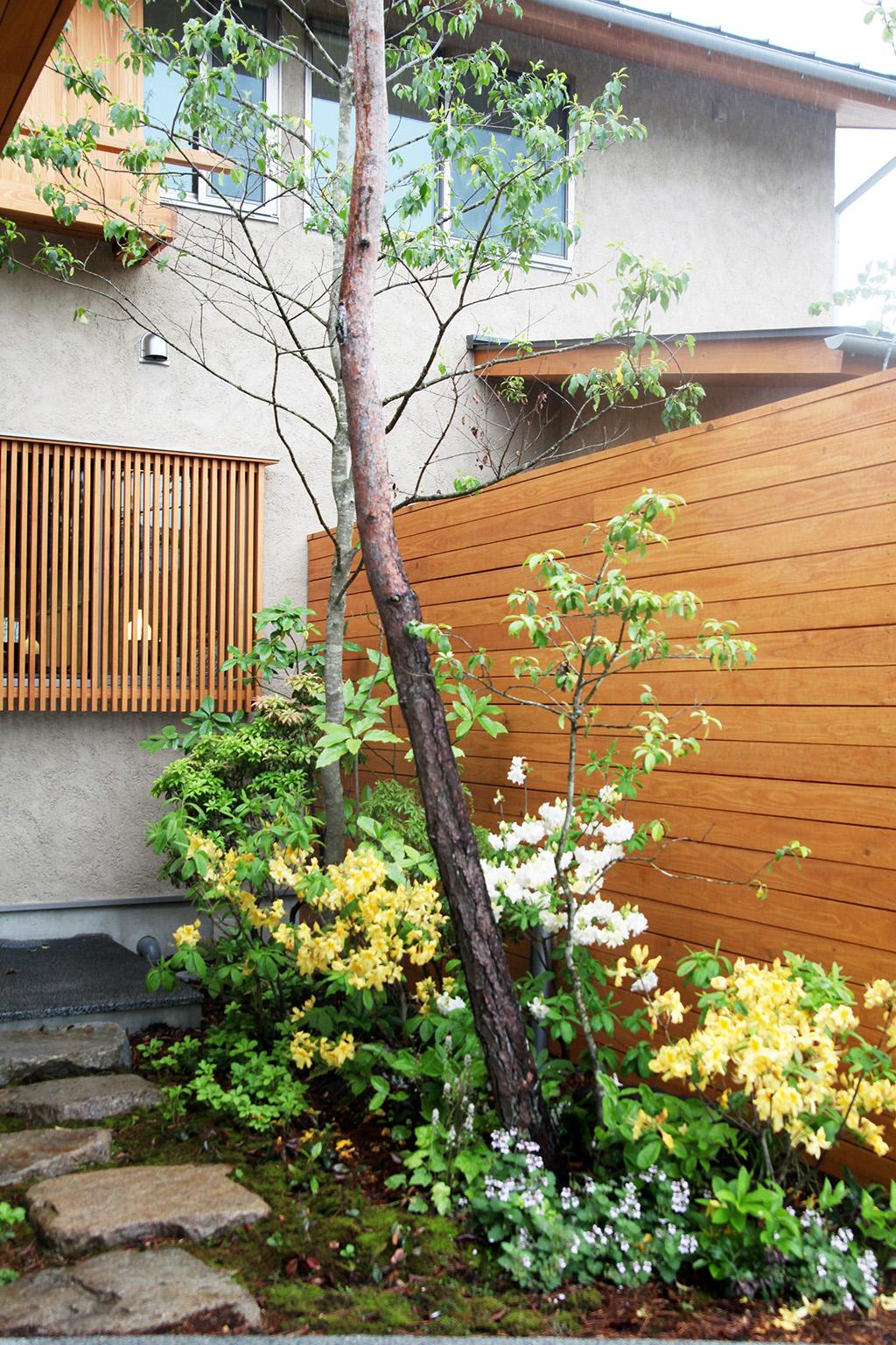 たつの市の木の家 アプローチを彩る季節の庭
