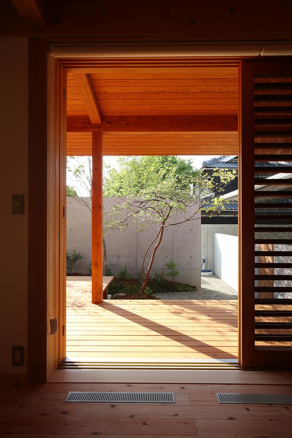加古川市の木の家 デッキ越しに雑木の庭を見る