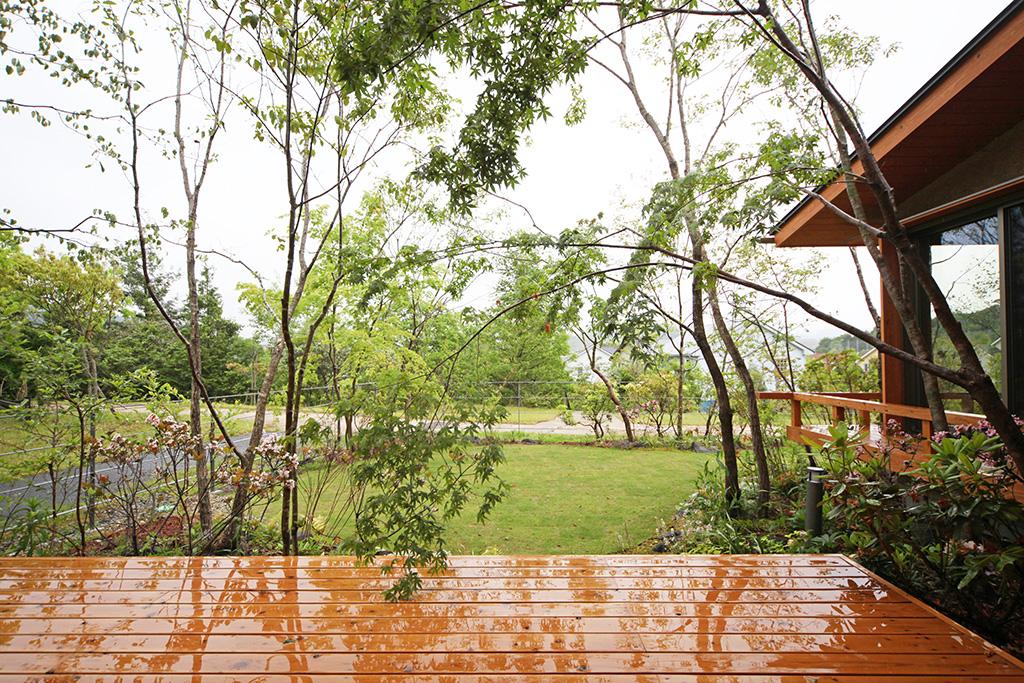 たつの市の木の家 しっとり雨に濡れ緑を増す季節の庭