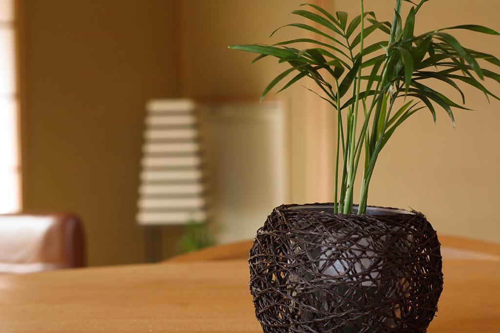 姫路市の木の家 風情のある和室