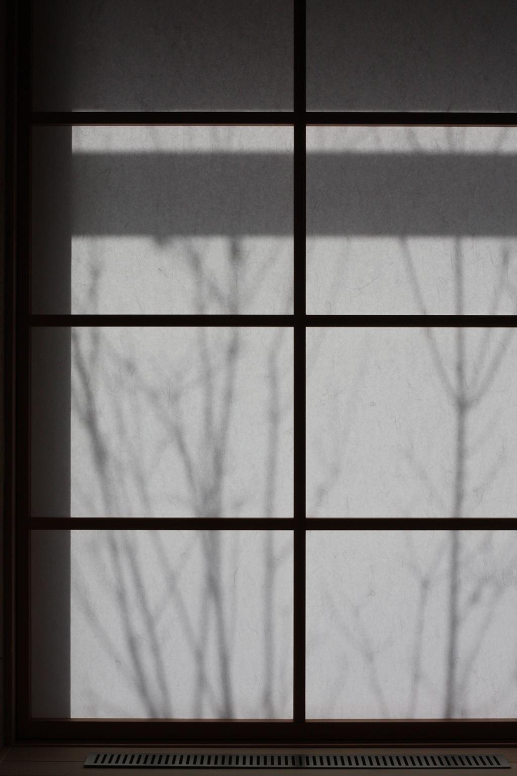 姫路市の木の家 障子に移る植栽の影