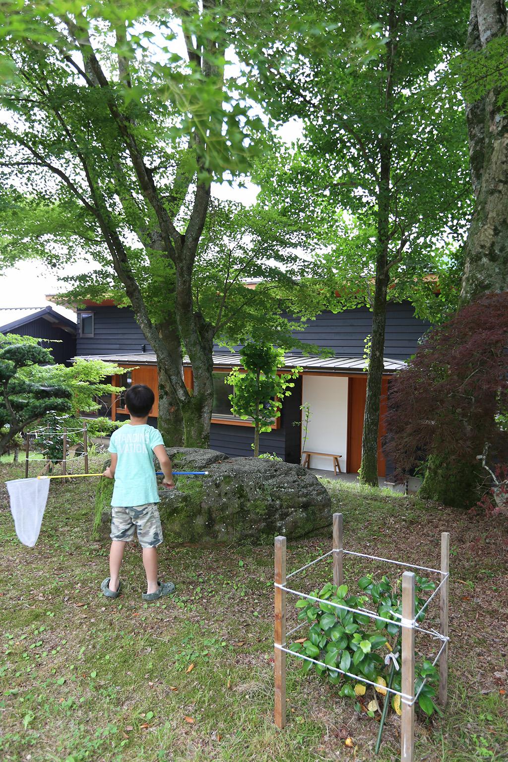 姫路市の木の家 虫取りをするお子さま